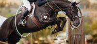 Les objets connectés dans le monde du cheval