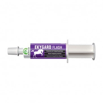 Audevard Ekygard Flash - 1x60 ml