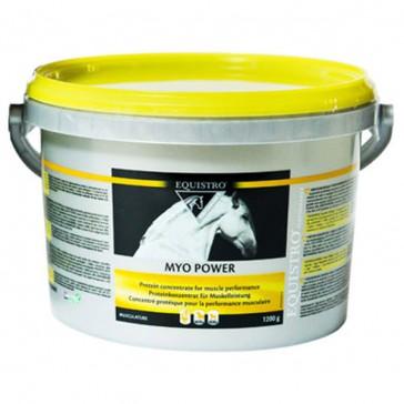 Equistro Myo Power Poudre - 1,2 Kg