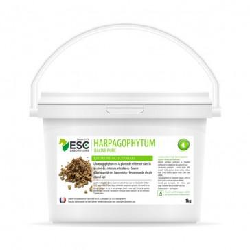 ESC Harpagophytum - 5 kg