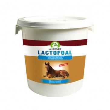 Audevard Lactofoal - 14 Kg