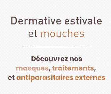 Luttez contre les mouches et la dermite estivale
