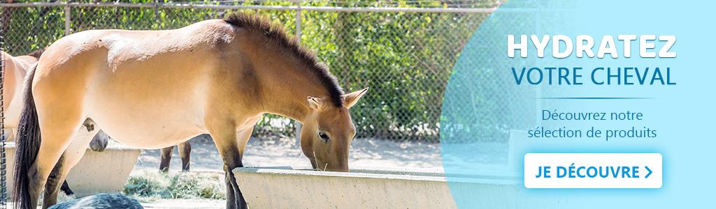 Hydratez votre cheval grâce à notre sélection de produits électrolytes
