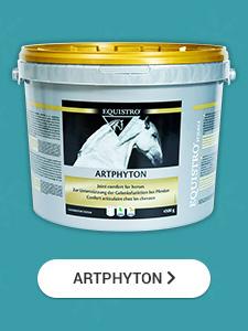 Equistro Artphyton