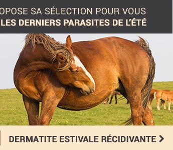 Dermatite Estivale Recidivante
