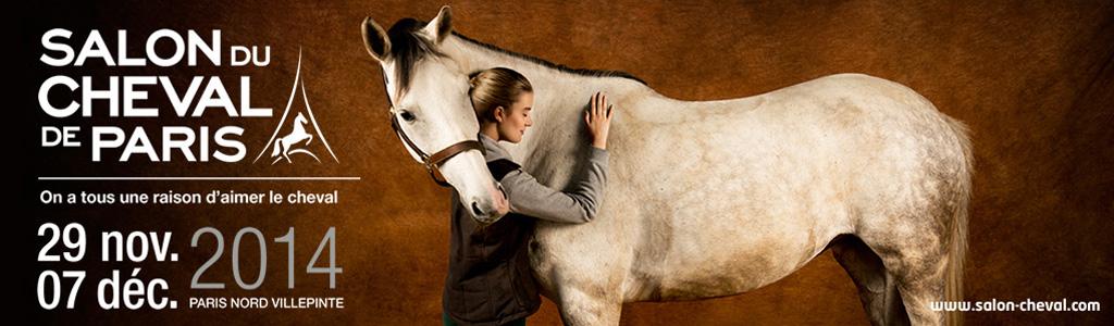 prenez soin de votre cheval